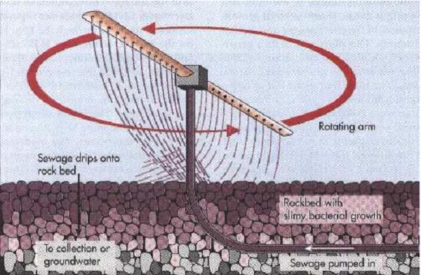 bể lọc sinh học hiếu khí