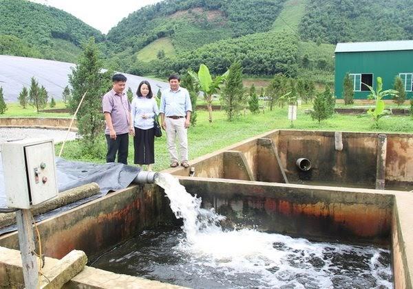 Nước thải tinh bột có nồng độ hữu cơ cao rất khó xử lý