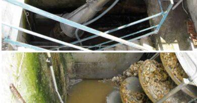 máy tách rác trục vít tại Hưng yên