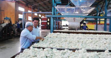 bên trong nhà máy sản xuất sản phẩm từ cao su có nhiều máy móc