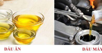 phân biệt bể tách mỡ và bể tách dầu
